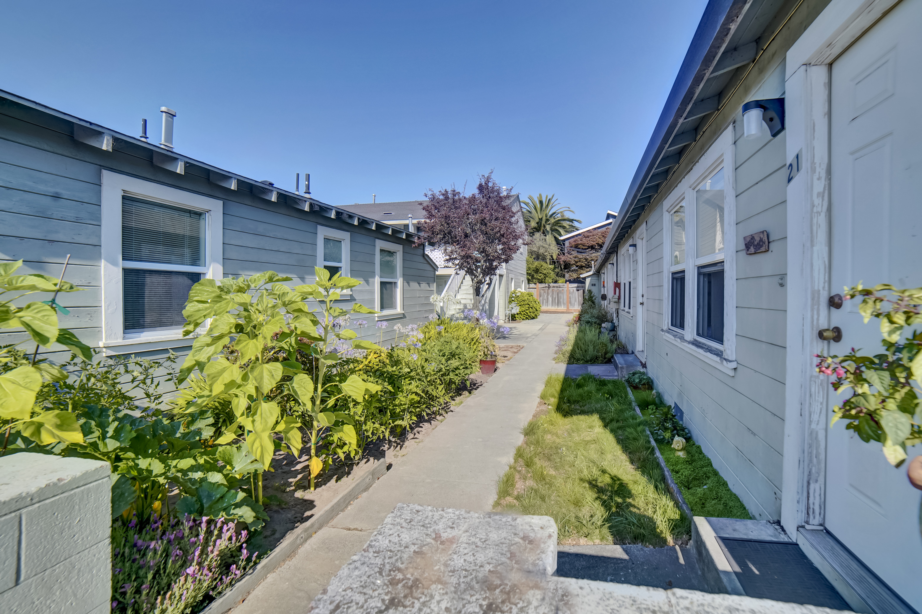 21661 East Cliff Drive, Santa Cruz 95062, ,Multi-Resident,For Sale,East Cliff,1032